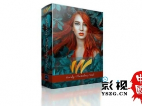 图片调色修图PS插件 Moody Photoshop Panel 1.1.2 Win/Mac